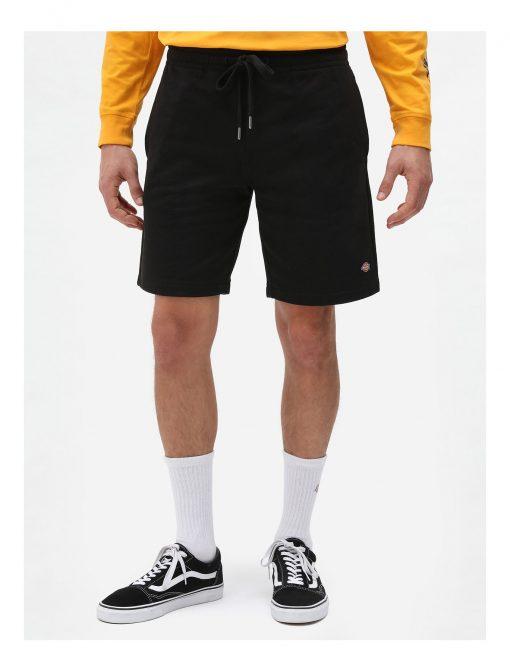 Dickies Champlin Shorts Black